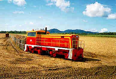 Queensland sugar cane railways today